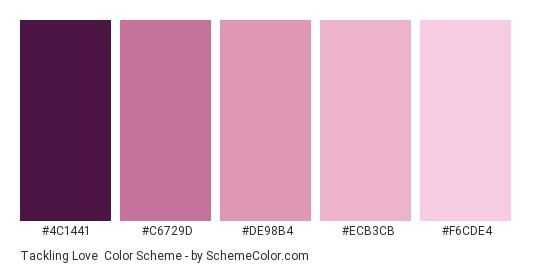 Tackling Love - Color scheme palette thumbnail - #4C1441 #C6729D #DE98B4 #ECB3CB #F6CDE4