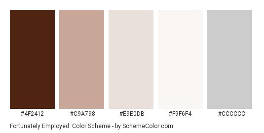 Fortunately Employed - Color scheme palette thumbnail - #4F2412 #C9A798 #E9E0DB #F9F6F4 #CCCCCC