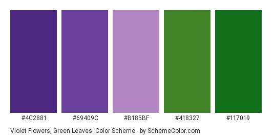Violet Flowers, Green Leaves - Color scheme palette thumbnail - #4c2881 #69409c #b185bf #418327 #117019