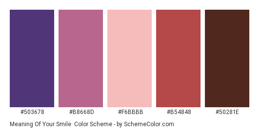 Meaning of Your Smile - Color scheme palette thumbnail - #503678 #B8668D #F6BBBB #B54848 #50281E