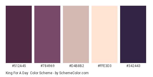 King For A Day - Color scheme palette thumbnail - #512a45 #784969 #d4b8b2 #ffe3d3 #342443