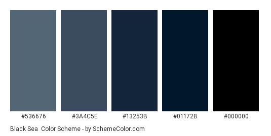 Black Sea - Color scheme palette thumbnail - #536676 #3A4C5E #13253B #01172B #000000