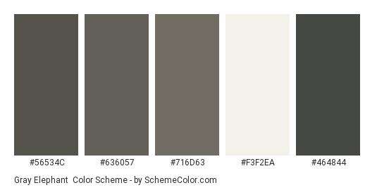 Gray Elephant - Color scheme palette thumbnail - #56534c #636057 #716d63 #f3f2ea #464844