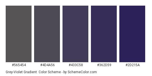 Grey-Violet Gradient - Color scheme palette thumbnail - #565454 #4d4a56 #433c58 #362d59 #2d215a