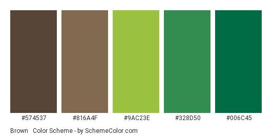 Brown Green Wall Mural Color Scheme Palette Thumbnail 574537 816a4f