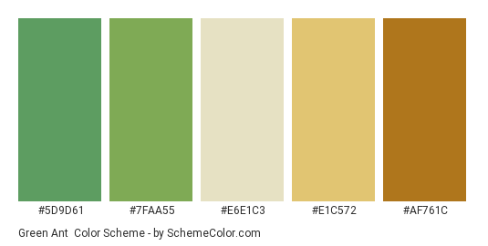 Green Ant - Color scheme palette thumbnail - #5D9D61 #7FAA55 #E6E1C3 #E1C572 #AF761C