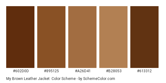 My Brown Leather jacket - Color scheme palette thumbnail - #602d0d #895125 #a26d41 #b28053 #613312