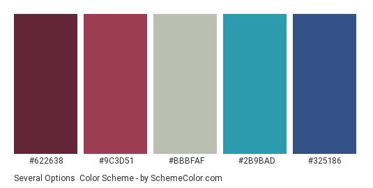 Several Options - Color scheme palette thumbnail - #622638 #9c3d51 #bbbfaf #2b9bad #325186