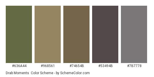 Drab Moments - Color scheme palette thumbnail - #636a44 #968561 #74654b #53494b #7b7778