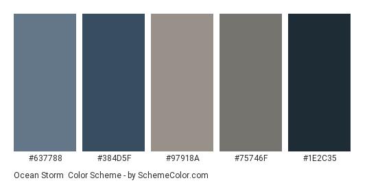 Ocean Storm - Color scheme palette thumbnail - #637788 #384d5f #97918a #75746f #1e2c35