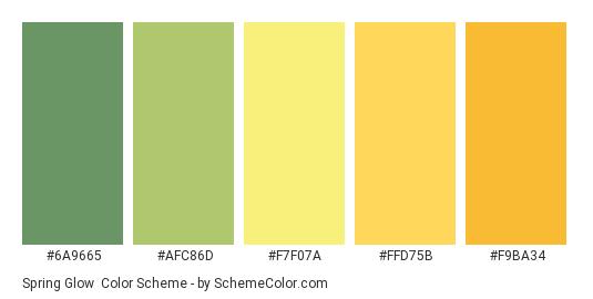 Spring Glow - Color scheme palette thumbnail - #6a9665 #afc86d #f7f07a #ffd75b #f9ba34