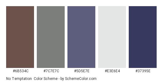 No Temptation - Color scheme palette thumbnail - #6b534c #7c7e7c #5d5e7e #e3e6e4 #37395e