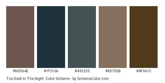 Too Dark in the Night - Color scheme palette thumbnail - #6d564e #1f313a #435253 #85705b #4f3a1c
