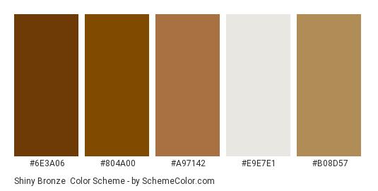 Shiny Bronze - Color scheme palette thumbnail - #6e3a06 #804a00 #a97142 #e9e7e1 #b08d57