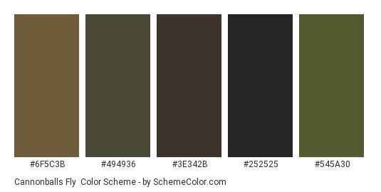 Cannonballs Fly - Color scheme palette thumbnail - #6f5c3b #494936 #3e342b #252525 #545a30