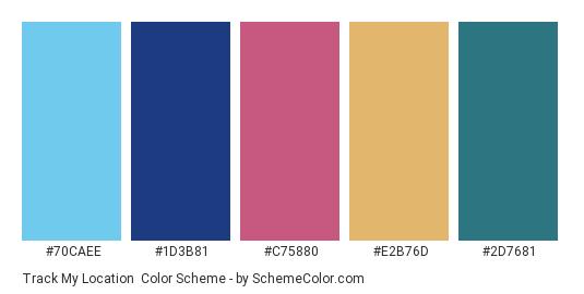 Track my Location - Color scheme palette thumbnail - #70CAEE #1D3B81 #C75880 #E2B76D #2D7681