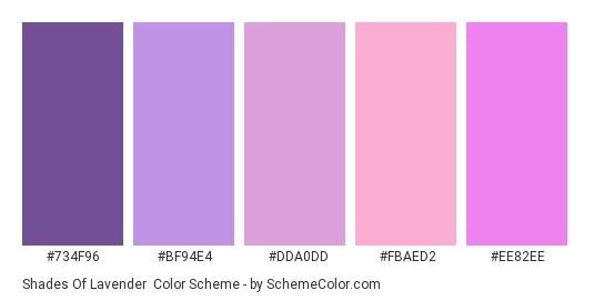 Shades of Lavender - Color scheme palette thumbnail - #734F96 #BF94E4 #DDA0DD #FBAED2 #EE82EE