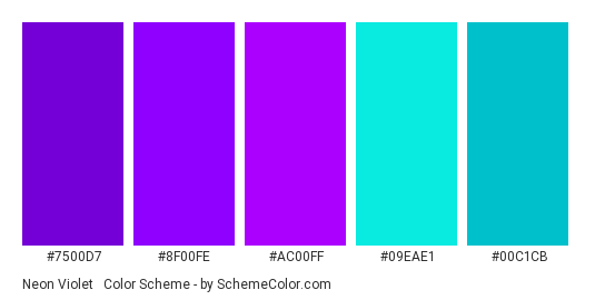 Neon Violet & Turquoise - Color scheme palette thumbnail - #7500d7 #8f00fe #ac00ff #09eae1 #00c1cb