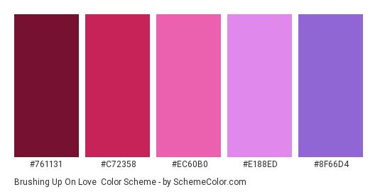 Brushing up on Love - Color scheme palette thumbnail - #761131 #C72358 #EC60B0 #E188ED #8F66D4