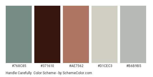 Handle Carefully - Color scheme palette thumbnail - #768c85 #371610 #ae7562 #d1cec3 #b6b9b5