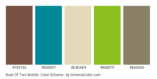 Best of Two Worlds - Color scheme palette thumbnail - #785142 #008897 #e4dab9 #8abf1f #8a8066