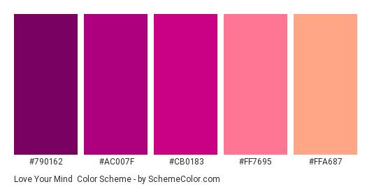 Love Your Mind - Color scheme palette thumbnail - #790162 #ac007f #cb0183 #ff7695 #ffa687