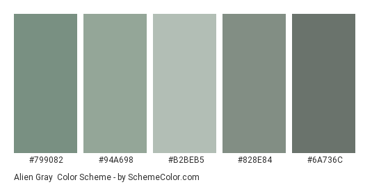 Alien Gray - Color scheme palette thumbnail - #799082 #94a698 #b2beb5 #828e84 #6a736c