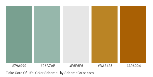 Take Care of Life - Color scheme palette thumbnail - #79a090 #96b7ab #e6e6e6 #ba8425 #a96004