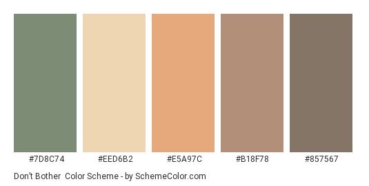Don't Bother - Color scheme palette thumbnail - #7D8C74 #EED6B2 #E5A97C #B18F78 #857567