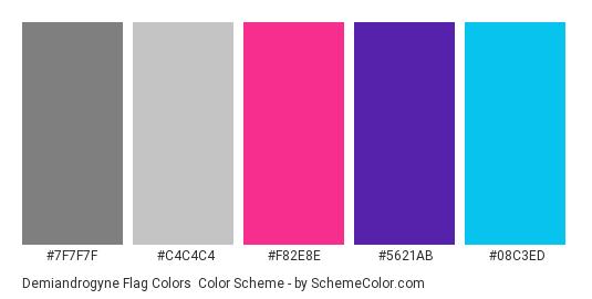 Demiandrogyne Flag Colors - Color scheme palette thumbnail - #7F7F7F #C4C4C4 #F82E8E #5621AB #08C3ED