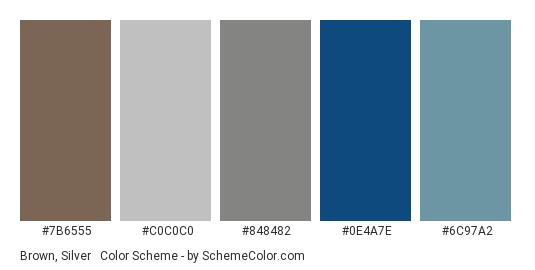 Brown, Silver & Classic Blue - Color scheme palette thumbnail - #7b6555 #c0c0c0 #848482 #0e4a7e #6c97a2