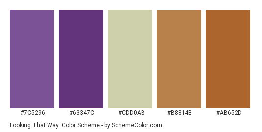 Looking That Way - Color scheme palette thumbnail - #7c5296 #63347c #cdd0ab #b8814b #ab652d