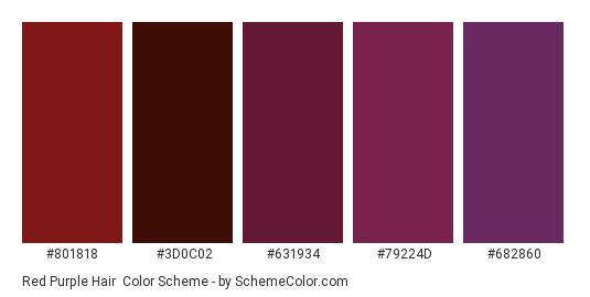Red Purple Hair - Color scheme palette thumbnail - #801818 #3D0C02 #631934 #79224D #682860