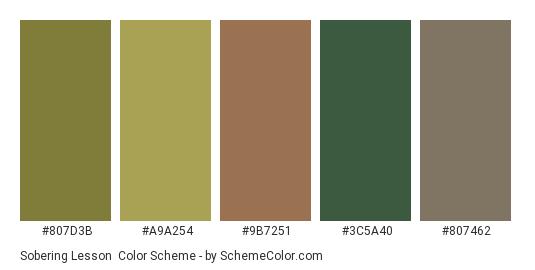 Sobering Lesson - Color scheme palette thumbnail - #807d3b #a9a254 #9b7251 #3c5a40 #807462