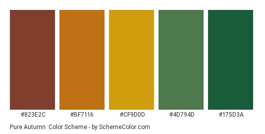 Pure Autumn - Color scheme palette thumbnail - #823e2c #bf7116 #cf9d0d #4d794d #175d3a