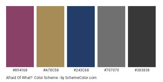 Afraid of What? - Color scheme palette thumbnail - #894168 #a78c58 #243c68 #707070 #383838