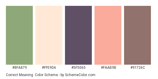 Correct Meaning - Color scheme palette thumbnail - #8FA879 #FFE9D6 #5F5065 #FAAB9B #91726C