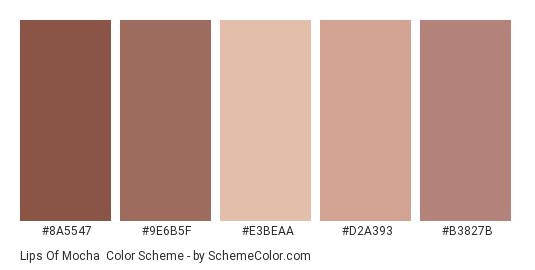 Lips of Mocha - Color scheme palette thumbnail - #8a5547 #9e6b5f #e3beaa #d2a393 #b3827b