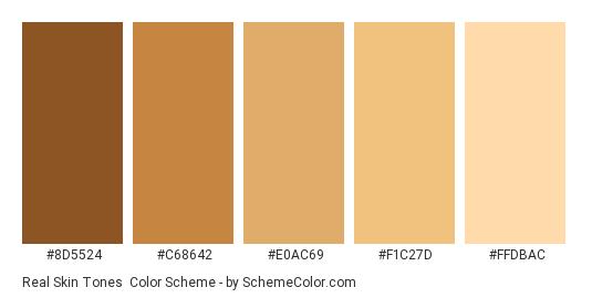 Real Skin Tones - Color scheme palette thumbnail - #8d5524 #c68642 #e0ac69 #f1c27d #ffdbac