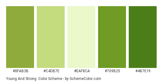 Young and Strong - Color scheme palette thumbnail - #8fab3b #c4db7e #EAF8CA #709b25 #4b7e19