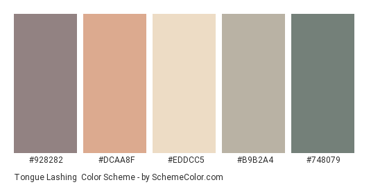 Tongue Lashing - Color scheme palette thumbnail - #928282 #DCAA8F #EDDCC5 #B9B2A4 #748079