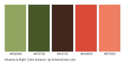 Intuition is Right - Color scheme palette thumbnail - #92A560 #475728 #41271e #D94A39 #EF7E63