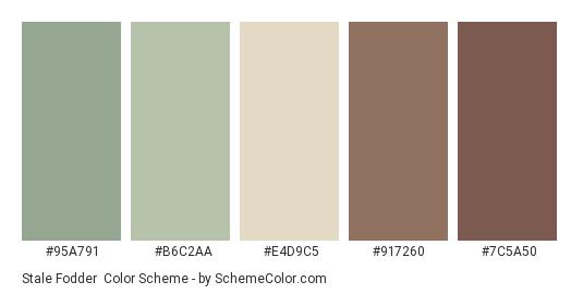 Stale Fodder - Color scheme palette thumbnail - #95A791 #B6C2AA #E4D9C5 #917260 #7C5A50