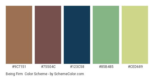 Being Firm - Color scheme palette thumbnail - #9C7151 #75504C #123C58 #85B485 #CED689