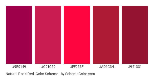 Natural Rose Red - Color scheme palette thumbnail - #9E0149 #C91C50 #FF053F #AD1C34 #941331