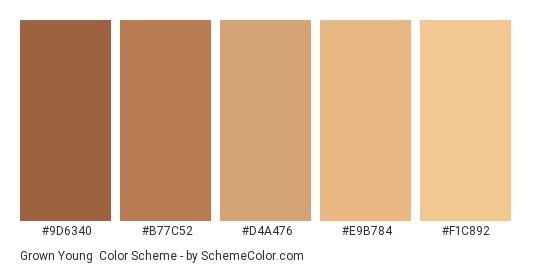 Grown Young - Color scheme palette thumbnail - #9d6340 #b77c52 #d4a476 #e9b784 #f1c892