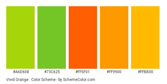 Vivid Orange & Green - Color scheme palette thumbnail - #A6D608 #73c625 #FF5F01 #FF9900 #FFBB00