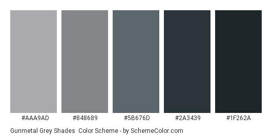 Gunmetal Grey Shades - Color scheme palette thumbnail - #AAA9AD #848689 #5B676D #2A3439 #1F262A