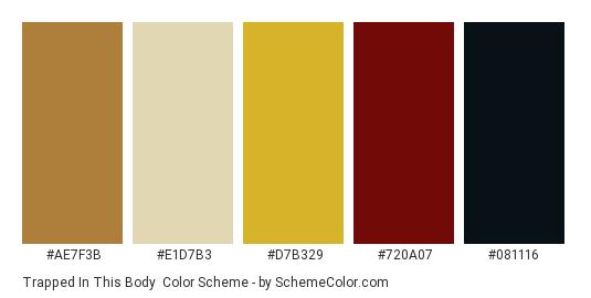 Trapped In This Body - Color scheme palette thumbnail - #AE7F3B #E1D7B3 #D7B329 #720A07 #081116