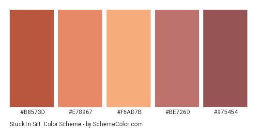 Stuck in Silt - Color scheme palette thumbnail - #B8573D #E78967 #F6AD7B #BE726D #975454
